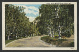 Nebraska - postcards [Anna Maria Gove collection]