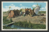 Nevada - postcards [Anna Maria Gove collection]