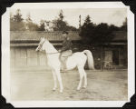 [Colonel Harry Diston on Japanese emperor's horse, circa 1946]
