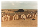 [Sleep tents, Operation Bright Star 1990 camp in Egypt, 1989]
