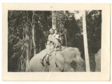 [Daphine Doster Mastroianni and friend on elephant, India, 1945]