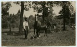 [Man standing with two horses]
