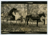 [Group in a carriage]