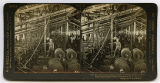 [White Oak Cotton Mills, loose stereograph cards]