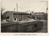 Plant of Greensboro Lumber Company